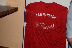 TSG Werner - 3